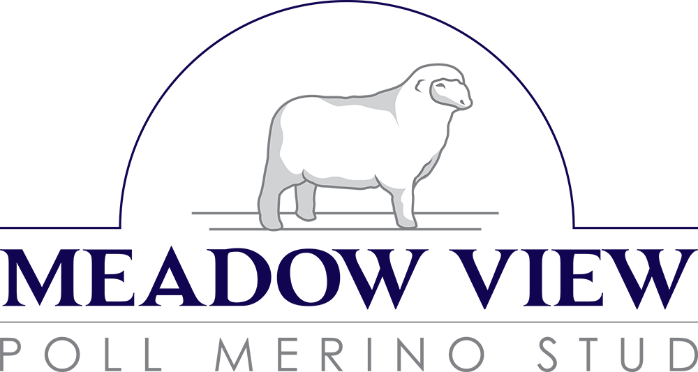 meadow view poll merino stud logo